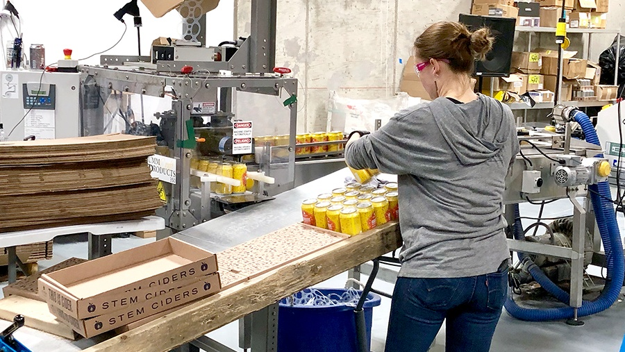 woman in grey sweatshirt bounds and groups yellow aluminum cans of cider into cardboard boxes in a concrete warehouse