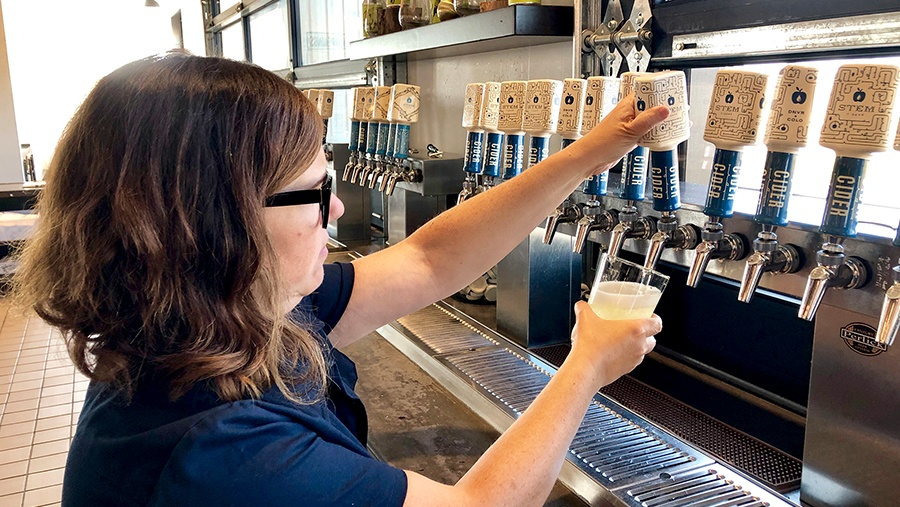 female employee with long brown hair and glasses wearing a navy shirt pours cider from one out of the many stem cider tap handles on a draft system