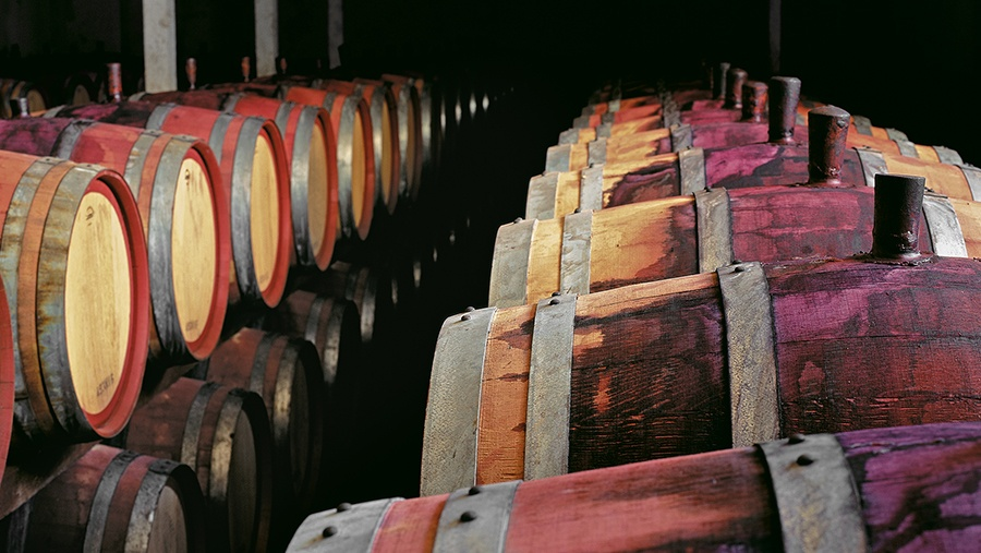 multiple rows of wooden wine aging barrels stained by red wine