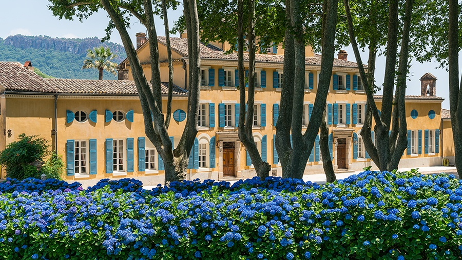A look at the Château d'Esclans property